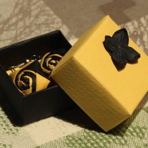 Náušnice s krabičkou